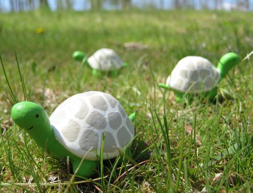 Bubbledog clay turtles